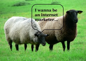 email marketing sheep talking